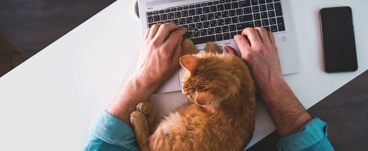 Man Typing with cat on table